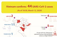 Vietnam confirms 44 SARS-CoV-2 cases