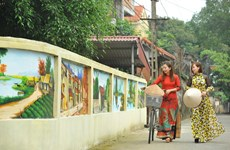 Mural paintings beautify streets in Hoa Lu