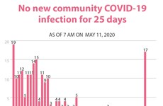No new cases of COVID-19 in Vietnam for 25 days straight
