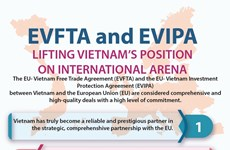 EVFTA and EVIPA lifting Vietnam's position on international arena