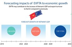 Potential impacts of  EVFTA on economic growth