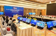 Ministers of RCEP member countries begin video conference