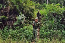 Border guards work to prevent illegal migration amid COVID-19
