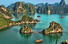 Vietnam among most searched places for visiting once travel ban lifted