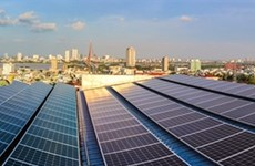 Da Nang City begins 1 million 'green' house projects