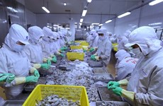 Vietnam's seafood exports to EU predicted to down 20%