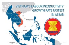 Vietnam's labour productivity  growth rate fastest in ASEAN