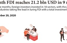 Nine-month FDI reaches 21.2 bln USD
