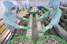 Momentum for Vietnamese shrimp to make breakthroughs