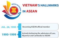 Vietnam's hallmarks in ASEAN