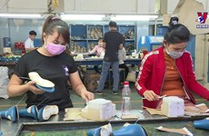 Hope for Vietnam's billion-dollar export industry at year's end