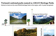 Vietnam's national parks named as ASEAN Heritage Parks