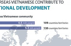 Overseas Vietnamese contribute to national development