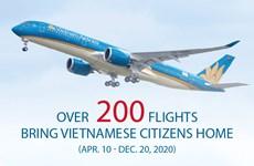 Over 200 flights bring Vietnamese citizens home