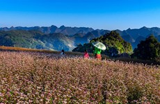 Ha Giang expects to welcome 1.4 million visitors in 2020