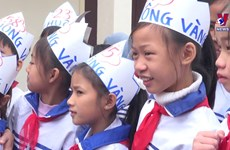Christmas comes to Catholic students in Nghe An