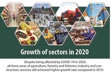 Sectors continue to grow despite Covid-19