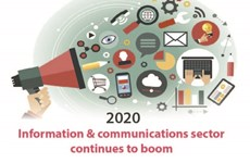 Information & communications sector continues to boom in 2020