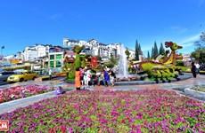Da Lat, the capital of flower export