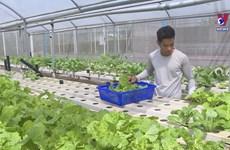 High-tech farming thriving in southern region