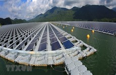 Vietnam's renewable energy grows fastest in Southeast Asia