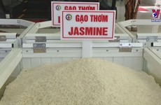 Fifth rice festival to take place in Vinh Long