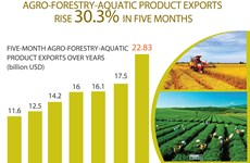 Agro-forestry-aquatic product exports rise over 30%