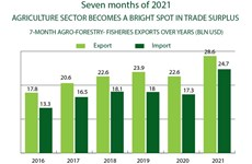 Agriculture sector becomes bright spot in trade surplus