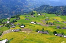 Ha Giang tourism to be promoted virtually