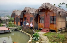 Homestay tourism in Sa Pa attracts visitors