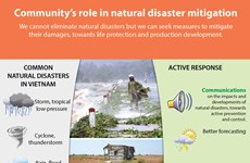 Community's role in natural disaster mitigation