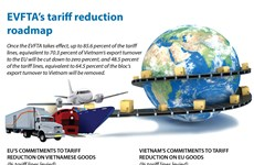 EVFTA's tariff reduction roadmap