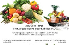 Fruit and veggie exports exceed 2 billion USD in first half