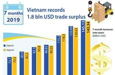 Vietnam records 1.8 bln USD trade surplus in 7 months