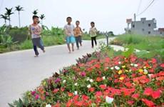 Flower roads beautify villages