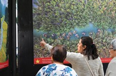 Exhibition on Vietnam opens in Mexico