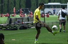 Vietnam runs into Malaysia prior to match