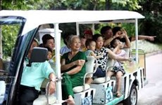 Visitors flock back to HCM City's oldest garden post Covid-19