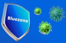 Bluezone app: New weapon in fight against pandemic
