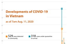 Developments of COVID-19 in Vietnam