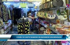 COVID-19 casts shadow on business households