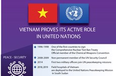 Vietnam proves its active role in UN