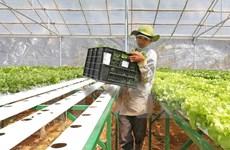 Ha Nam promoting centralised aquaculture areas