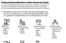 Industrial production index bounces back