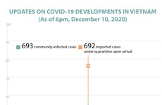 Updates on Covid-19 developments in Vietnam
