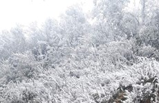 Mountainous region covered with frost