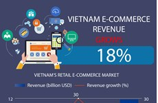 Vietnam e-commerce revenue grows 18 percent in 2020