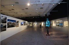 Exhibition showcases Vietnamese and Italian landscapes