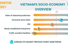 (Interactive) Overview of Vietnam's socio-economy in first 8 months of 2021