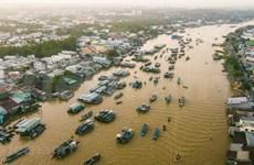 Cai Rang Floating Market at dawn
